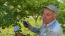 Ağaca bıraktığı not çiftçiyi duygulandırdı
